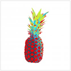 ANANAS CANADIEN